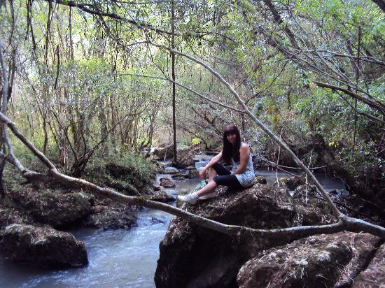 Obera, Argentina: 36.-Oberá-Tacuara Lodge: Senderos bordeando el arroyo