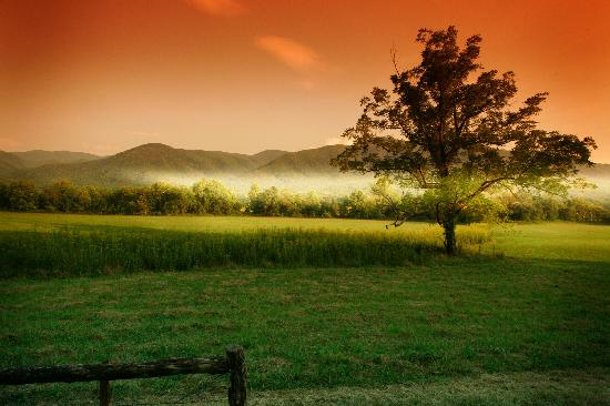 Tennessee: Cades Cove in TN