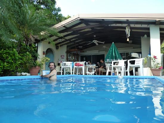 Hummingbird House: Pool and common/breakfast area