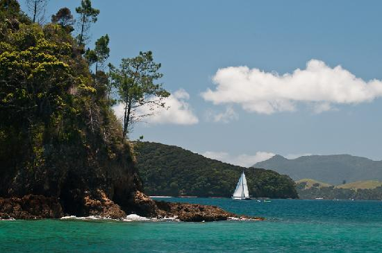 Bay of Islands Sailing/Gungha II: View somewhere in Bay of Islands