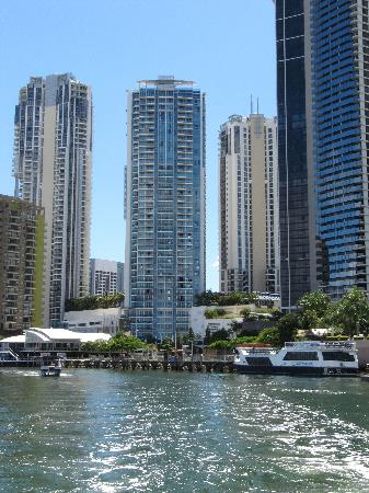 Reef Ryder Island Cruise Gold Coast : View of our hotel from the back of the boat