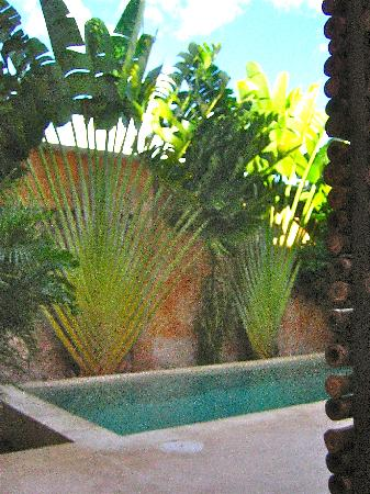 Hotel Casa San Angel: the intimate pool to the side