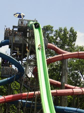 Six Flags St Louis: The blue waterslide on the left is awesome!