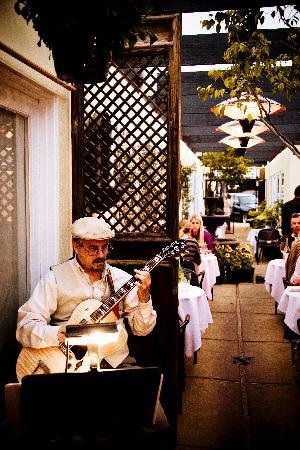 Finchs Bistro & Wine Bar: Finch's Courtyard