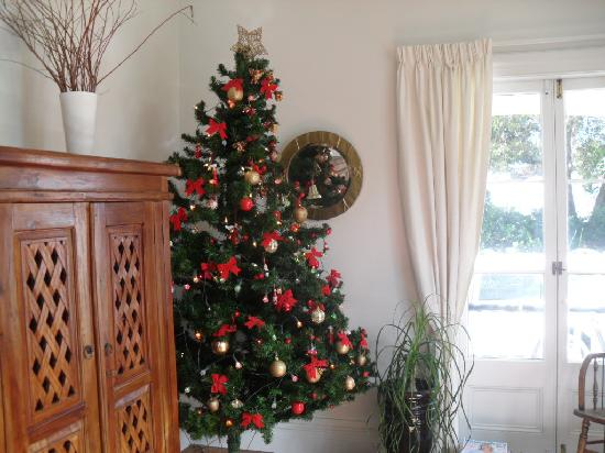 Airlie House : the Christmas tree in the lounge!