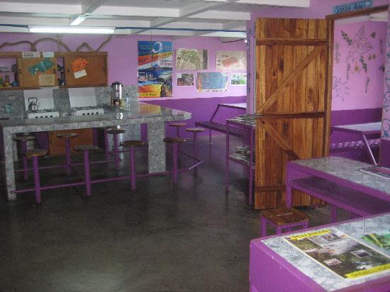Gringo Pete's Too: Kitchen and common area