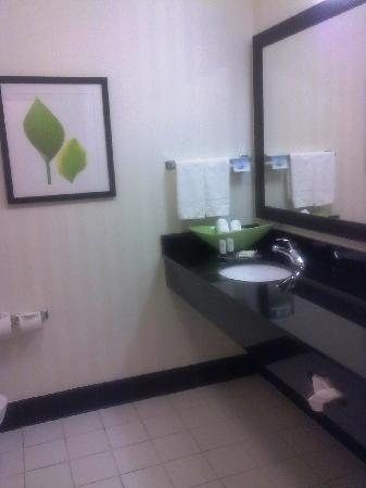 Fairfield Inn & Suites Tampa Fairgrounds/Casino: Bathroom with granite vanity