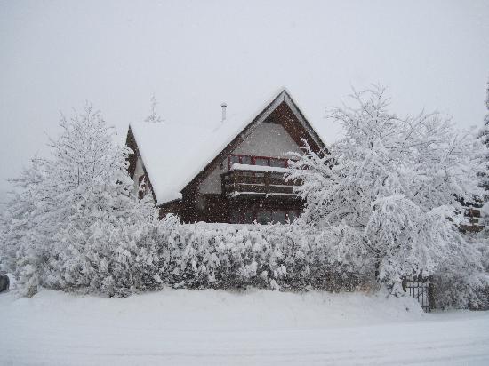 Columbine House: November snowstorm