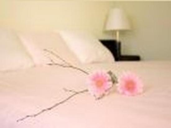Hotel Al Sole: Guest Room