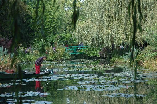 La Musardiere : monet's pond
