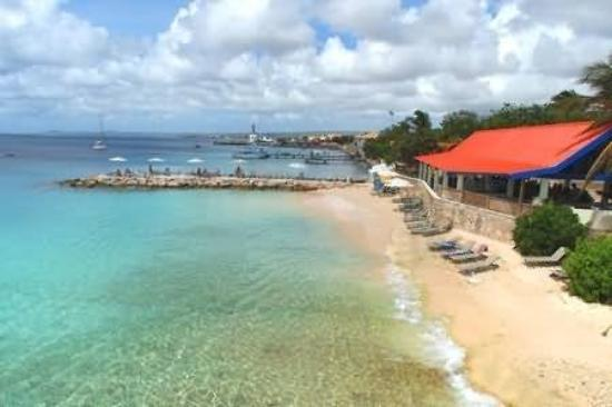Divi flamingo beach resort and casino 155 1 8 5 2018 prices reviews bonaire - Dive e divi ...