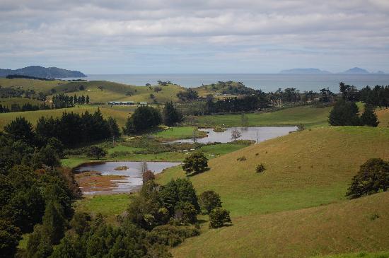 Tahi : The farm land