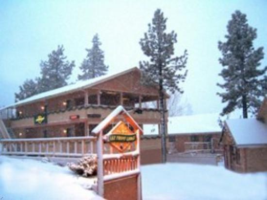 Big Bear Lake Front Lodge: Exterior
