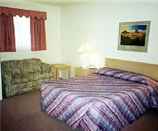 Flamingo Suites: Guest Room