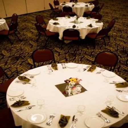 Borrego Springs Resort & Spa: Banquet Room