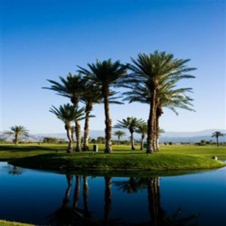 Borrego Springs Resort & Spa: Golf Island