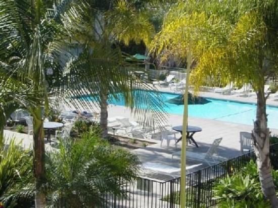 Lemon Tree Inn: Pool