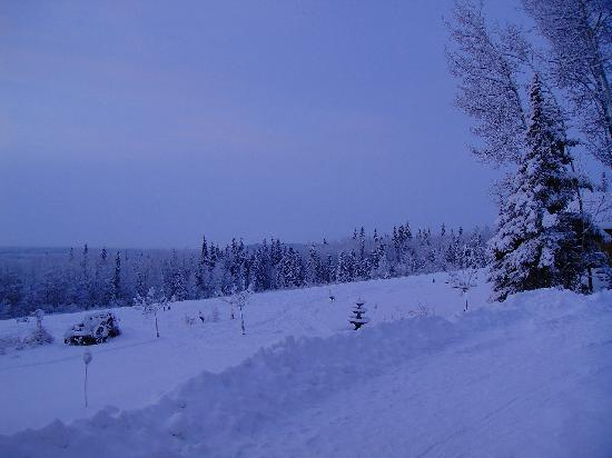 A Taste of Alaska Lodge: ロッジ前の風景