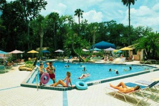 Tropical Palms Resort and Campground: Pool