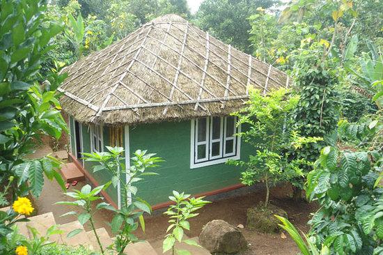 Harithavanam Farm House: cottage