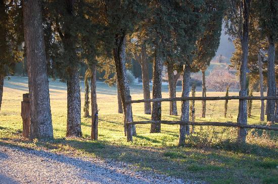 I Nidi di Belforte : che pace!