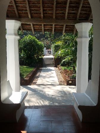 The Villa Goa: Looking over the front garden