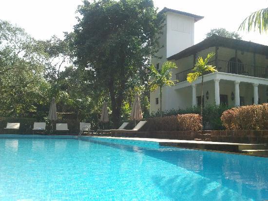 The Villa Goa: The Swimming pool and Villa Jardim