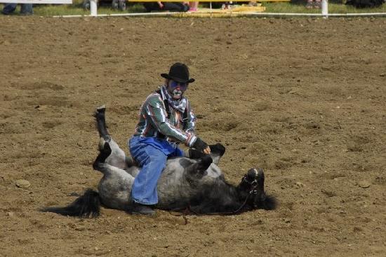 La Reata Ranch: Der Clown beim Rodeo