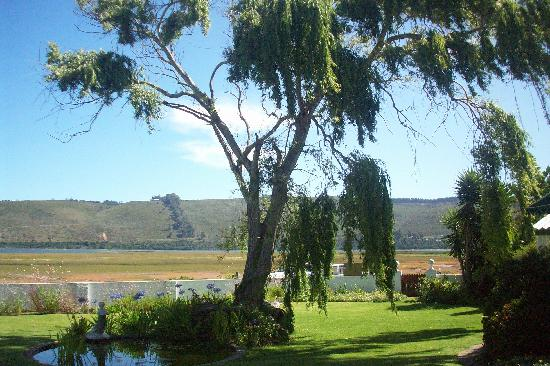 Point Lodge on the Water's Edge, Knysna Lagoon: Pond in garden with lagoon in the background