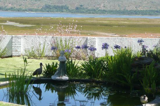 Point Lodge on the Water's Edge, Knysna Lagoon: Pond