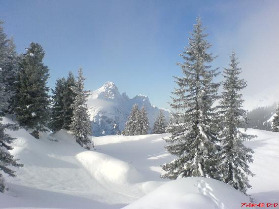 Berggasthaus Alpenrose: Walk in the perfect snow