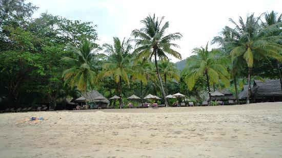 Khaolak Paradise Resort: Hotelstrand