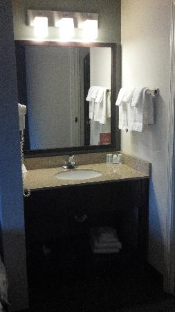 Sleep Inn & Suites of Lake George: Standard room bathroom vanity