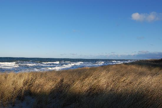 Waldhotel: das Meer und Strand ca. 2 Minuten entfernt