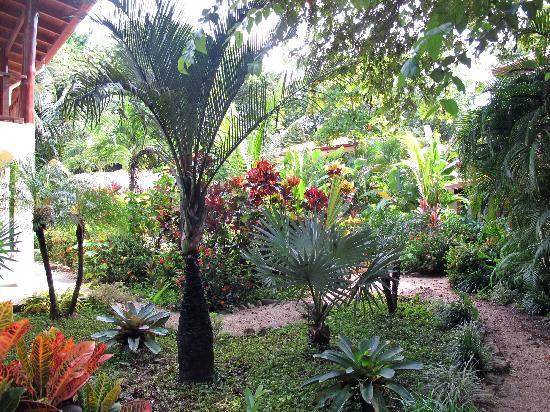 Villa Tortuga: Grounds