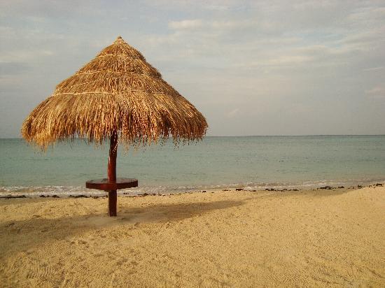 Nice Sea Resort: Beautiful Beach