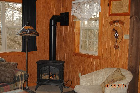 The Nest at Palisades Cabins: Cozy Fire Anyone?