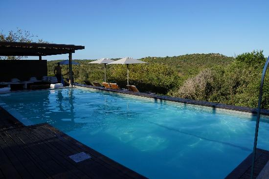 Singita Lebombo Lodge: pool