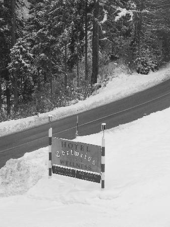 Hotel Edelweiss: l'hotel sotto la neve