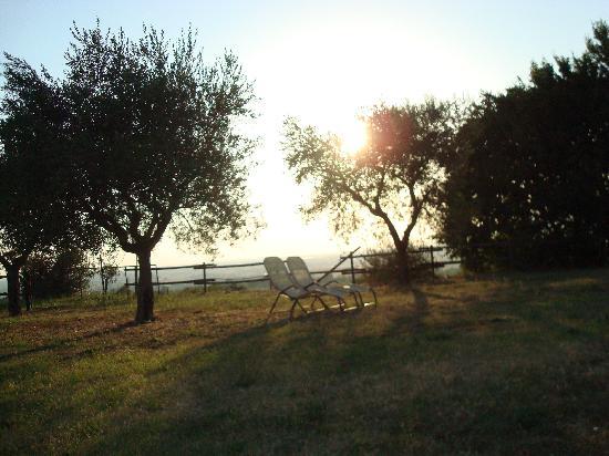 Garda Country House: Il giardino