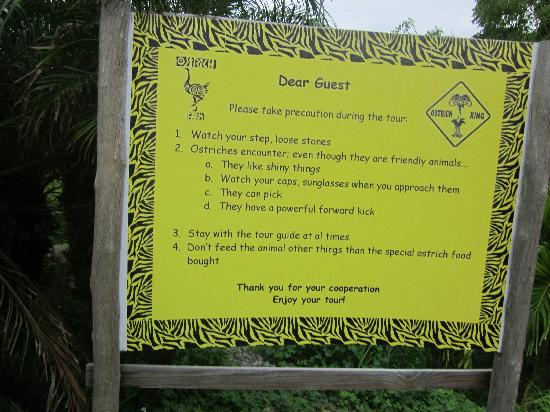 Aruba Ostrich Farm: Ostrich Warning Sign