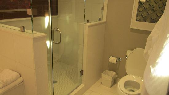 City Loft Hotel: View of the shower/toilet from the bathroom door.