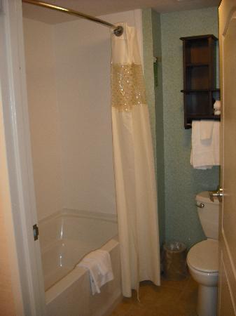Hampton Inn & Suites Exeter : Bathroom / Room 333