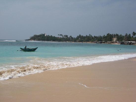 Neptune Bay Hotel: Beach