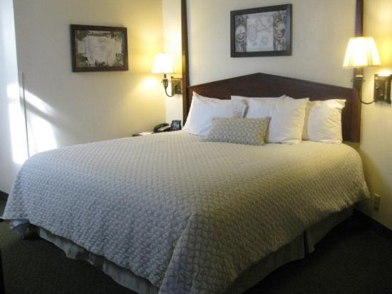 Embassy Suites by Hilton Charleston - Historic Charleston: King Guest Suite