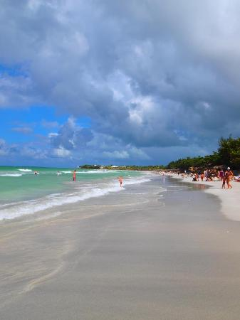Blau Varadero Hotel Cuba: Clean beach