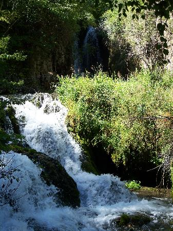 Spearfish Canyon: Part of Roughlock Falls