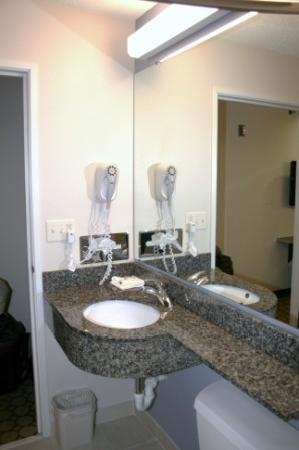 Microtel Inn & Suites by Wyndham Elkhart: Sink area.