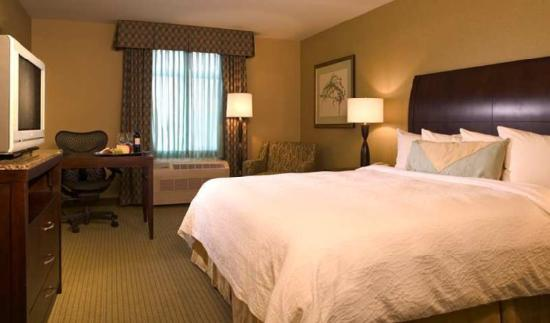 Hilton Garden Inn Worcester: Guest Room