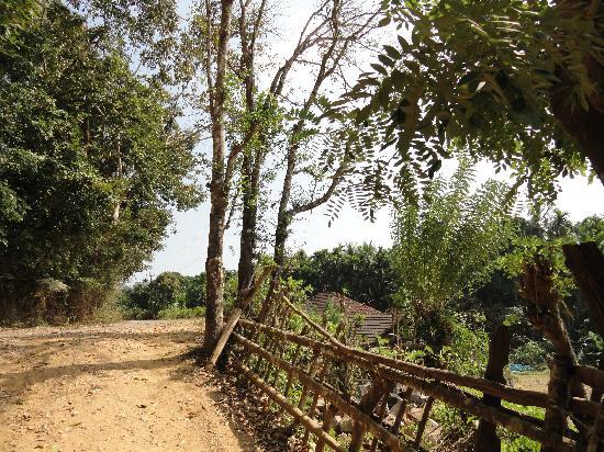 Amara Homestay, Dandeli: surrounding view